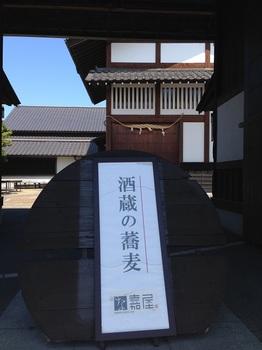 buヒヨコマメ 001 - コピー (9).JPG