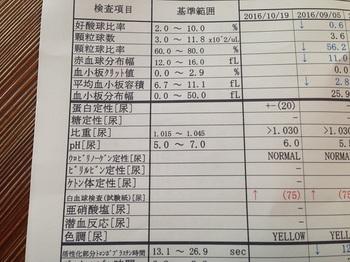 bu動物病院 001 - コピー (1).JPG