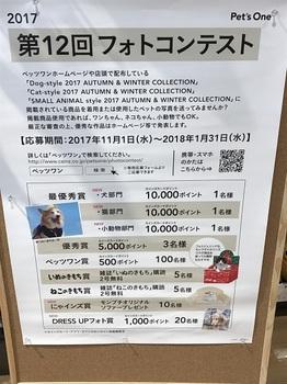 bu太平山紅葉 001 - コピー (2).JPG