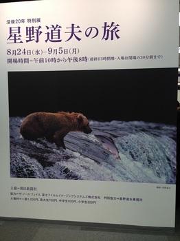 bu東京JAZZ 001 - コピー (6).JPG