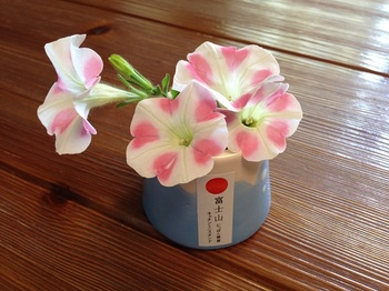 bu梅干し&パッチワーク2 001 - コピー (21).JPG