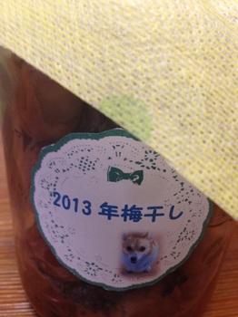 bu梅干し&パッチワーク2 001 - コピー (35).JPG