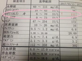 bu病院1 001 - コピー (2).JPG
