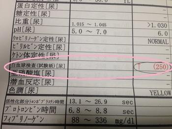 bu病院1 001 - コピー (3).JPG