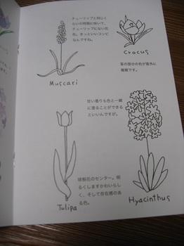 bu美原カフェ 001 - コピー (11).JPG