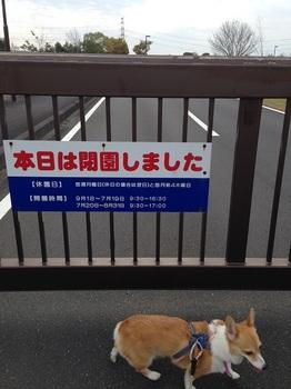 bu那珂川水遊園7 023 - コピー (14).JPG