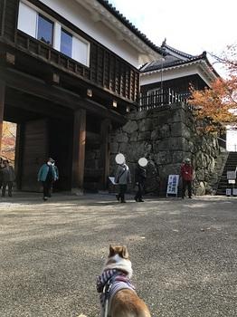 bu黒部ダム 001 - コピー (66).JPG
